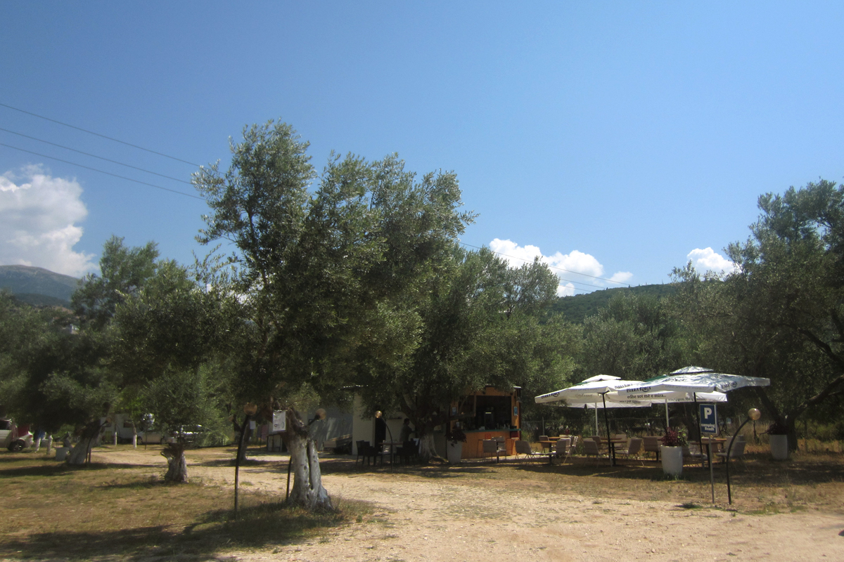 Himare, olive trees, camping, Albania